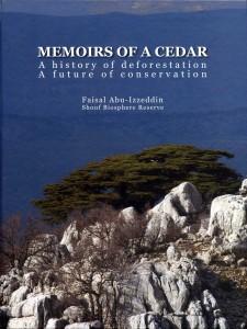 Memoirs of a Cedar
